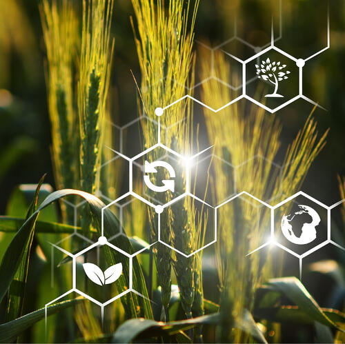 AGROTECH интеллектуальные технологии в сельском хозяйстве