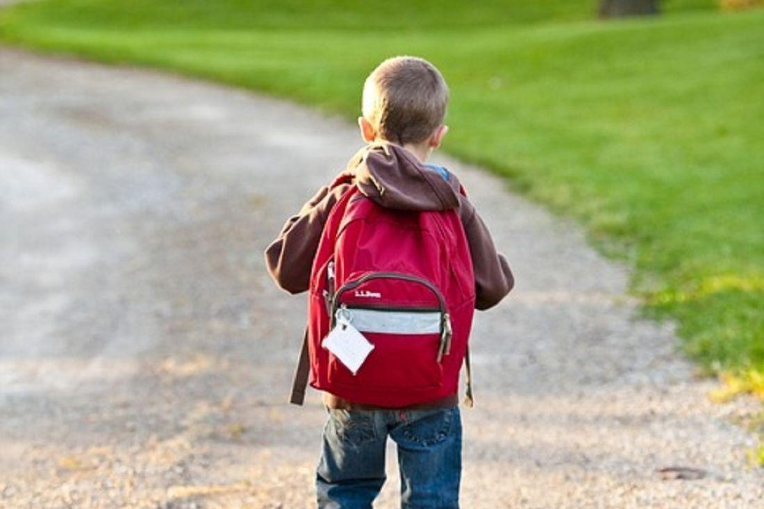 Информационные щиты с кнопкой тревоги: школьные маршруты предлагают обезопасить