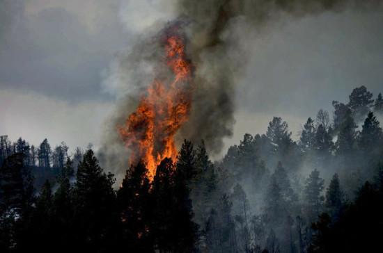 МЧС предлагает оснастить пожарные станции беспилотниками
