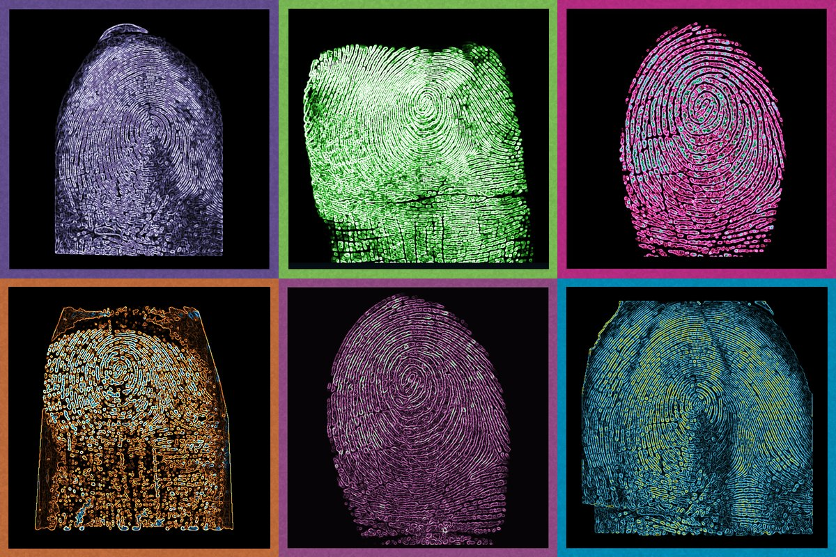 Только 8% сотрудников готовы доверить работодателюсвою биометрию