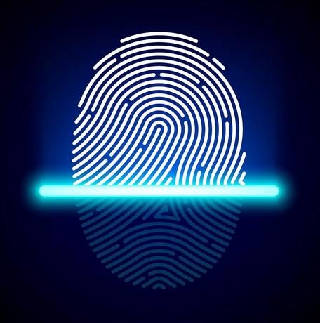 Отпечаток пальца и его математический образ