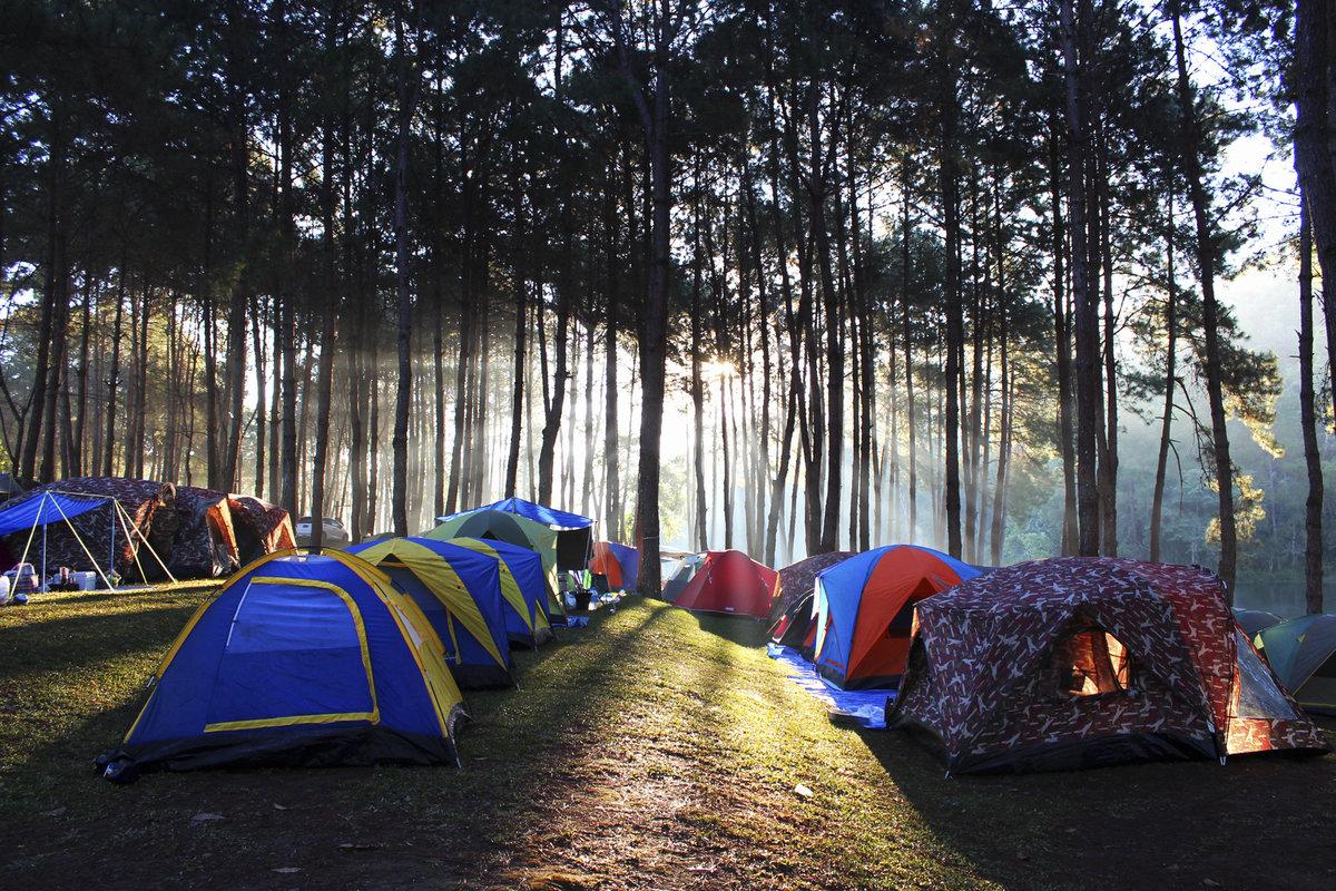 Палатки летних лагерей начнут оснащать пожарной сигнализацией