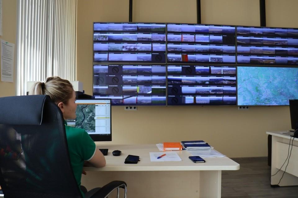 В Красноярском крае установили видеонаблюдение за 7 миллионами гектаров леса